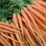 301908_at_the_market_serie__carrots