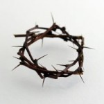 877712_crown_of_thorns