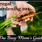 Frugal Gardening for Busy Moms