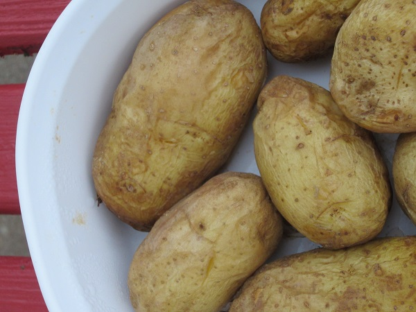 baked potatoes for hashbrowns
