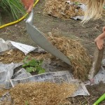 Free Weed Suppressor {Frugal Gardening 101}