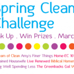 A Spring Cleaning Challenge ~ (Who's in?  We have prizes!)