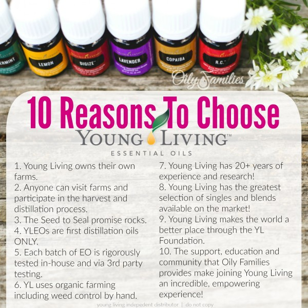 of-choose-yl-new