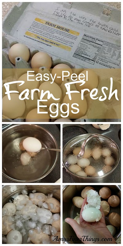 Peel Farm Fresh Eggs Easily